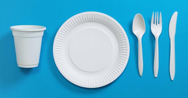 結論:使い捨ての食器を使えばいい