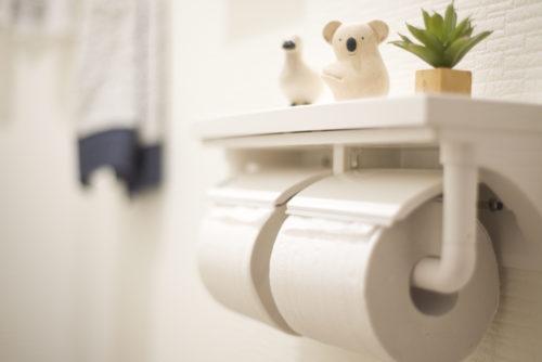 トイレットペーパーの概念に変化を。